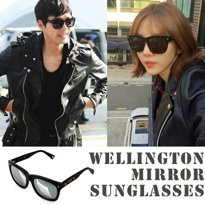 Chic design eyewear / Wellington mirror sunglasses
