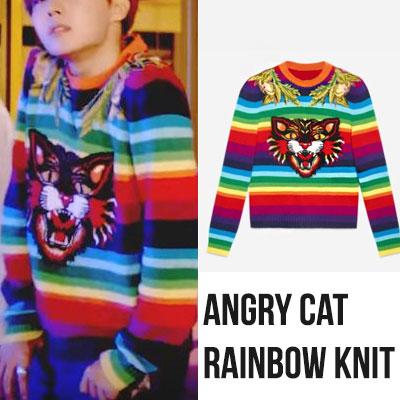 [UNISEX] BTS J-HOPE/DNA MV st. RAINBOW ANGRY CAT LONG SLEEVE KNIT