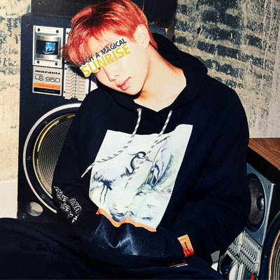 [UNISEX]  BTS RM STYLE/PRINT ARM PATCH PULLOVER HOODIE/DNA