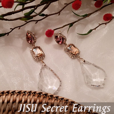 CRYSTAL SECRET EARRINGS