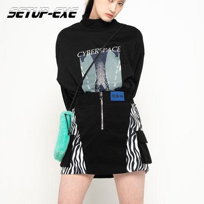 【SETUP-EXE】Zebra Sk - white